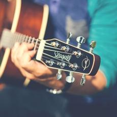 Seagull: A fazer guitarras de qualidade desde 1982